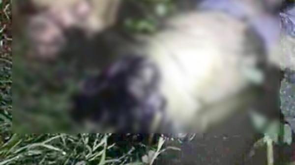 """Xác minh đoạn livestream gây hoang mang về """"án mạng kinh hoàng, 1 gia đình 3 người bị giết"""""""