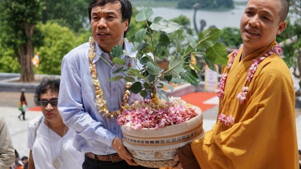 Hà Nam: Đến chùa Tam Chúc ngắm cây Bồ Đề thiêng