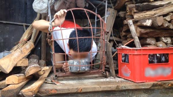 Xuất hiện nhiều thanh thiếu niên chui vào chuồng, ăn thức ăn động vật để quay clip đăng Youtube kiếm view