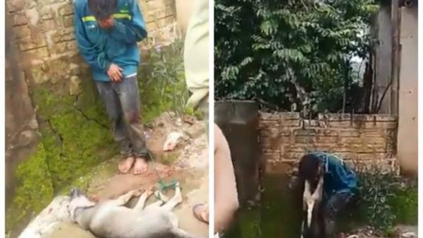CLIP: Nam thanh niên trộm chó bị người dân bắt trói, treo xác chó lên cổ
