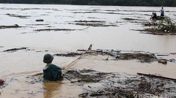 Đi vớt củi giữa dòng nước lũ, người đàn ông trúng báu vật trăm tuổi trị giá gần nửa tỷ đồng