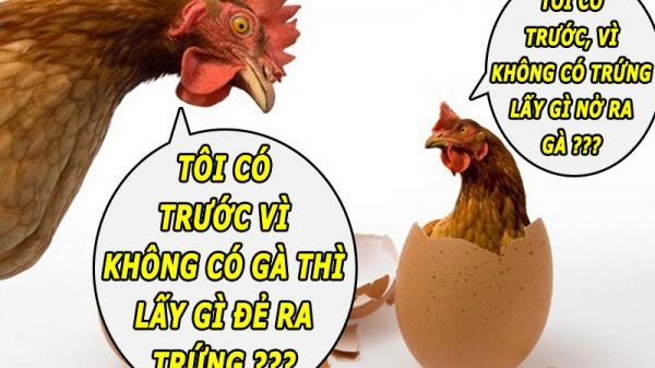 Đã có câu trả lời: Con gà hay quả trứng có trước?