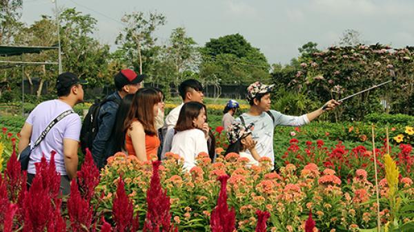 Miền Tây: Giá vé vào thăm làng hoa trăm tuổi Sa Đéc, nhiều người được miễn phí