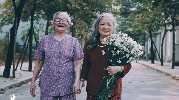 Tình bạn già bên mùa cúc họa mi: Bộ ảnh khiến bất cứ ai cũng muốn lưu giữ khoảnh khắc đẹp bên người bạn thân