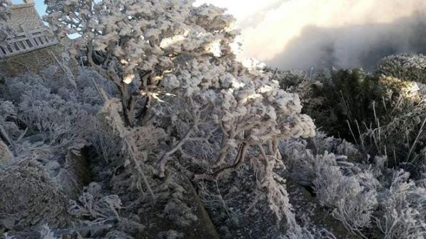 Băng tuyết bao phủ trên đỉnh Fansipan
