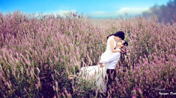 Bạn còn chần chừ gì nữa mà không xách balo lên và đi thưởng thức trọn vẹn vẻ đẹp của loài hoa bình dị này!