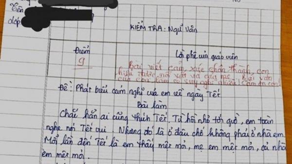 """Bài văn 'Ghét Tết"""" vì làm mẹ mệt mỏi của học sinh gây """"bão"""" mạng"""