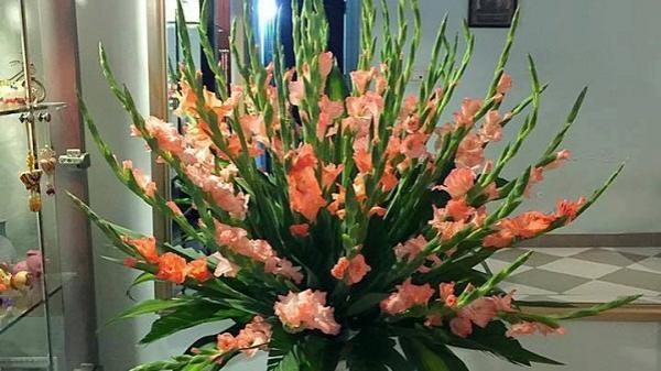 Bí quyết cắm bình hoa lay ơn nghìn tay ngày Tết tỏa tròn sáng rực cả góc nhà, hút tài lộc may mắn cho năm mới