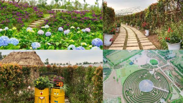 Ngay gần Vĩnh Phúc, có một nơi Tặng vé MIỄN PHÍ tại công viên mê cung và đảo hoa hồng nhân ngày 8/3