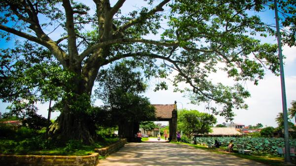 Bốn ngôi làng cổ đẹp ngây ngất gần Hà Nội nên đi ngay cuối tuần