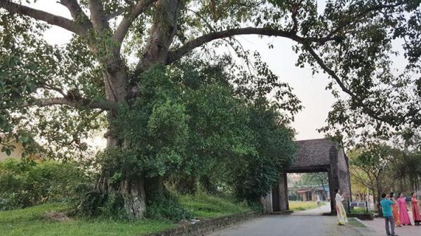 Ngôi làng dành cho những ai muốn tìm lại sự bình yên trong tâm hồn giữa Thủ đô hoa lệ