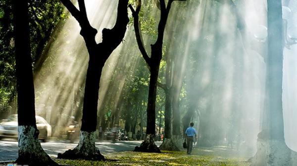 """Những con phố lãng mạn nhất Hà Nội - tín đồ """"sống ảo"""" không thể bỏ qua"""
