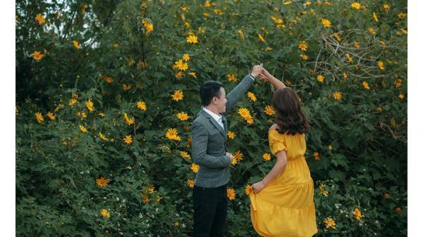Đi ngay kẻo lỡ mùa hoa dã quỳ trải vàng khắp Ba Vì