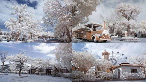 Chẳng cần sang tận Paris, ngay sát Hà Nội cũng có một thiên đường tuyết trắng phủ kín vạn người mê