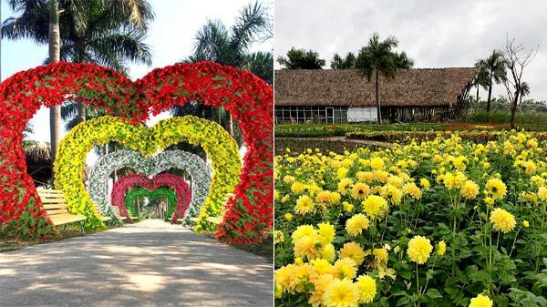 Hà Nội: Check-in không gian đẹp mê mẩn tại Lễ hội hoa chào Xuân 2019 tại công viên Mê cung và hoa hồng