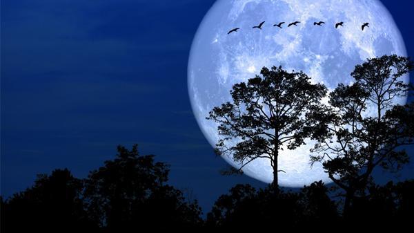 ĐÊM NAY: 'Siêu trăng tuyết' to, đẹp và sáng nhất năm sẽ diễn, đừng bỏ lỡ!