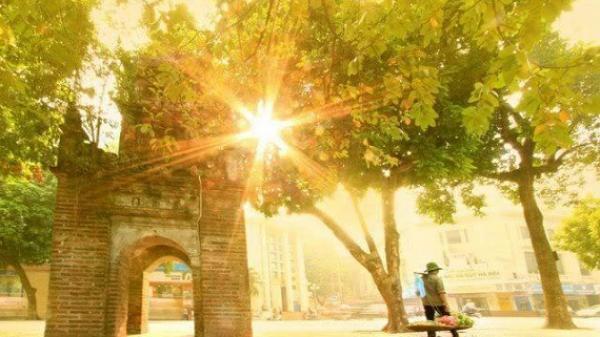 Chút se lạnh trong nắng vàng, đất trời Hà Nội đã sang thu rồi đấy…