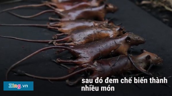"""Về ngôi làng nổi danh với đặc sản... thịt chuột: """"Tôi ăn rất nhiều, một ngày có thể ăn hàng cân chuột"""""""