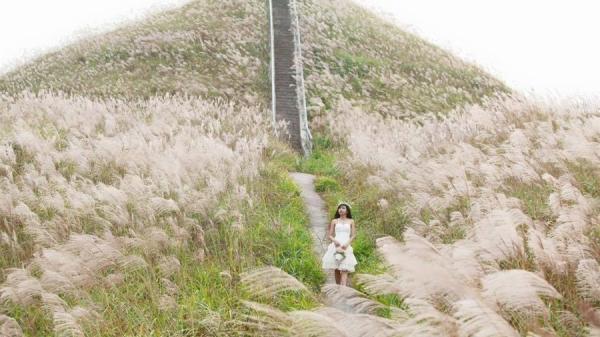 Giới trẻ 'phát sốt' với 'nấc thang lên thiên đường' đẹp lụi tim ngay gần Hà Nội