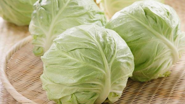 Mắc những bệnh này mà cố tình ăn bắp cải sẽ tử vong rất nhanh