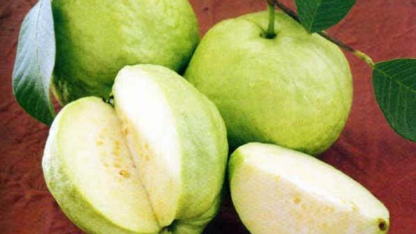 Đây chính là loại quả chứa nhiều hóa chất nhất đặc biệt gây hại nghiêm trọng cho sức khỏe