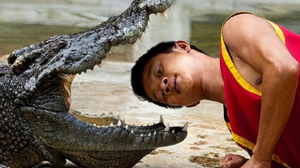 Rùng mình với nghề đấu vật cùng cá sấu siêu mạo hiểm