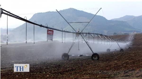 Đã mắt chiêm ngưỡng những cỗ máy nông nghiệp thông minh và khổng lồ lần đầu xuất hiện tại Việt Nam