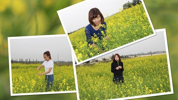 Giới trẻ Hà Tĩnh ùn ùn kéo nhau check-in tại vườn hoa cải Đồng Nôi đang khoe sắc rực rỡ