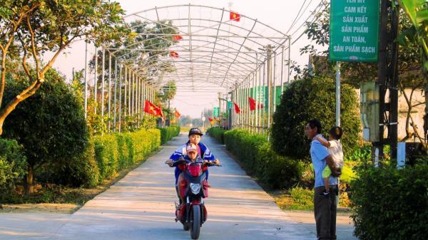Ngắm những con đường nông thôn đẹp miên man ở Hà Tĩnh