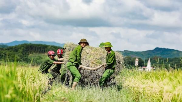 """Công an huyện Hương Sơn (Hà Tĩnh) giúp dân gặt lúa """"chạy"""" siêu bão Mangkhut"""