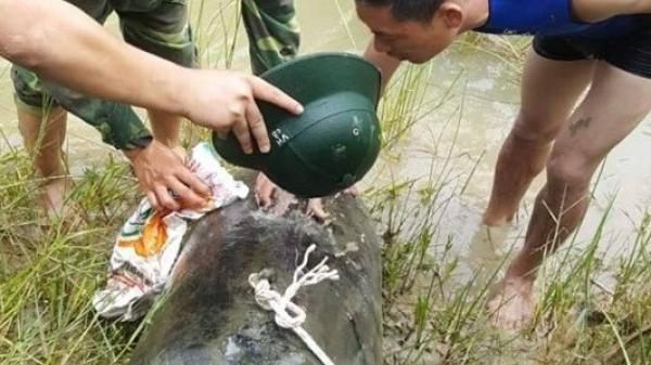 """Hà Tĩnh: Đánh cá trên sông, """"trúng"""" quả bom lớn dài 1,2 m"""