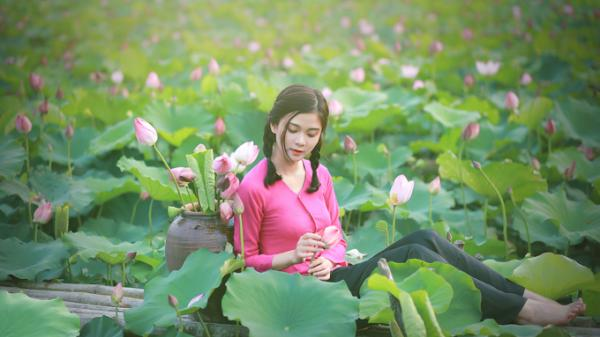 Đầm sen xứ Nghệ giữ chân thiếu nữ giữa trời hè
