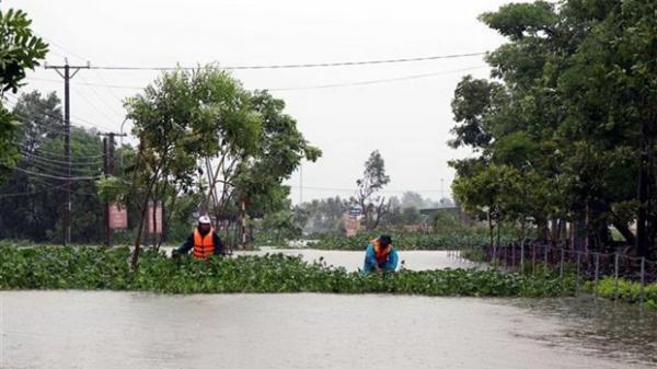 Mưa lũ, triều cường làm sạt lở hàng trăm mét kè biển ở Hà Tĩnh