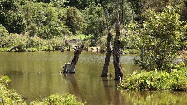 """Về Điện Biên """"tắm"""" hồ Noong U hoang sơ, mát rượi giữa mùa hè"""
