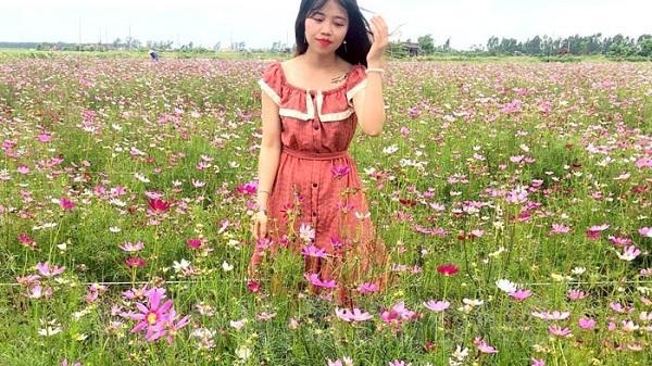Xuất hiện vườn hoa sinh thái đầu tiên ở huyện Nam Sách