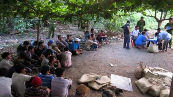 Hậu Giang: Triệt xóa nhiều tụ điểm đá gà ăn tiền trên địa bàn huyện Châu Thành A ngày đầu năm mới
