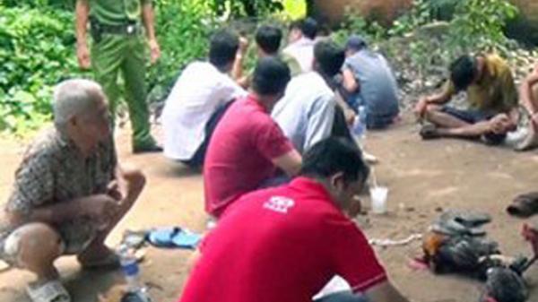 Châu Thành A (Hậu Giang): Triệt phá nhiều tụ điểm đá gà ăn thua bằng tiền