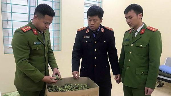 Nậm Pồ: Bắt đối tượng vận chuyển 22kg quả thuốc phiện