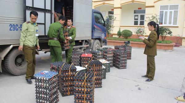 Công an Hòa Bình bắt giữ trên 25 vạn quả trứng gà, vịt không rõ nguồn gốc