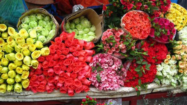 Bí quyết giữ hoa tươi lâu trong ngày Tết