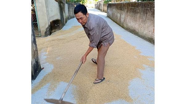 Đoạn tuyệt với m.a t.úy, người đàn ông Điện Biên làm giàu từ nghề nông
