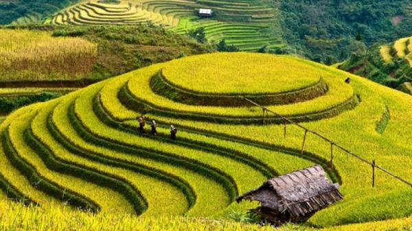 'Bỏ túi' kinh nghiệm du lịch Sa Pa cho người mới đi lần đầu