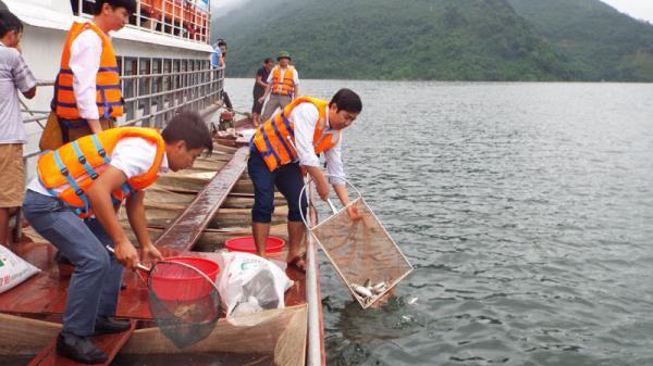 Thả cá phóng sinh, tái tạo nguồn lợi thủy sản hồ Hòa Bình