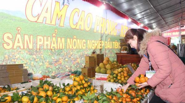 Bế mạc Lễ hội cây ăn quả có múi và Hội chợ nông nghiệp tỉnh Hòa Bình năm 2018