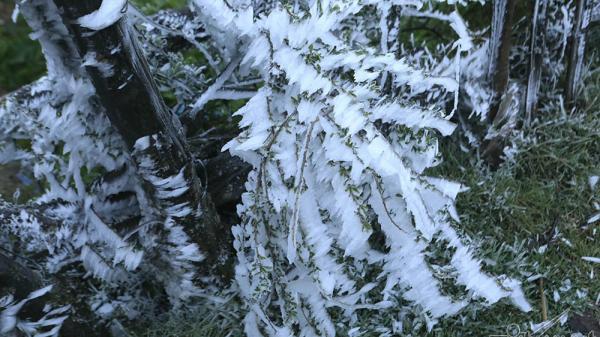 Tết dương lịch: Rét kỷ lục trong 10 năm, nhiều nơi chìm trong mưa lạnh