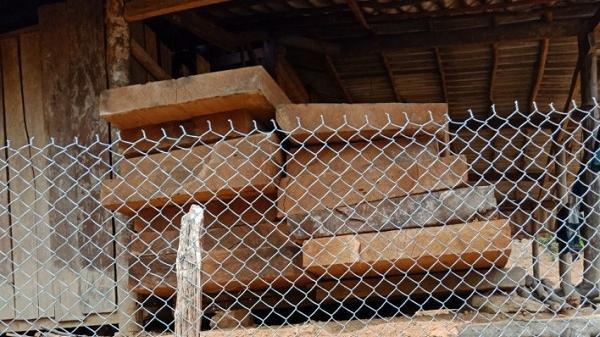 Điện Biên: Phát hiện 20 bộ sập gỗ có đường kính 1,2m dài 2,8m