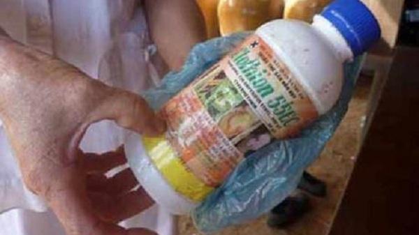 Điện Biên: Nghi vấn về cái c.hết do 'ngộ độc thuốc sâu' 15 năm trước