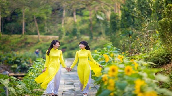 Ùn ùn khách đến lễ hội Hoa Hướng dương ở công viên mới tỉnh Hòa Bình