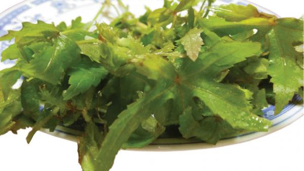 Lá sôn nấu với lóc đồng: Món canh mạ nấu những ngày mưa xứ Huế