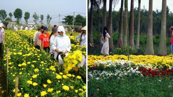 Hưng Yên: Lễ hội Làng hoa Xuân Quan lớn nhất miền Bắc diễn ra từ ngày 16/12 đến hết 22/12
